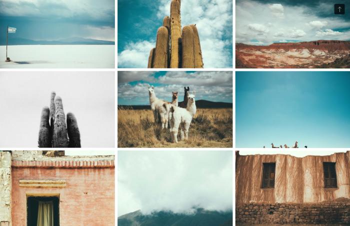 Decoración fotografía Pampa